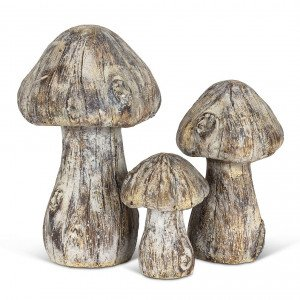 Wood Look Mushroom