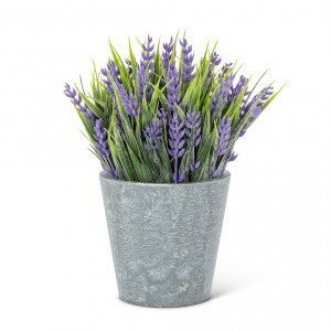 Lavender Plant Pot